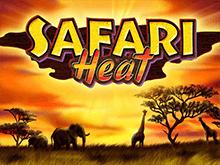 Safari Heat в клубе Вулкан